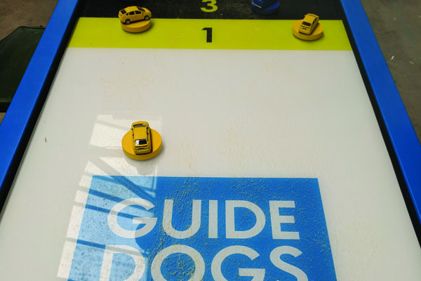 Guide dogs Gallery1